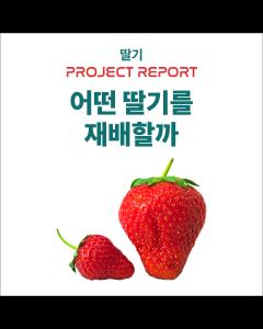 [프로젝트 REPORT] 어떤 딸기를 재배할까